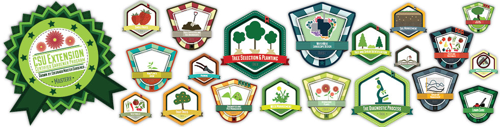 Competency Aligned Badges